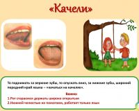 slide011